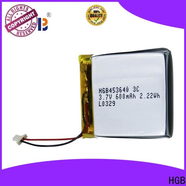 popular flat li ion battery directly sale for computers