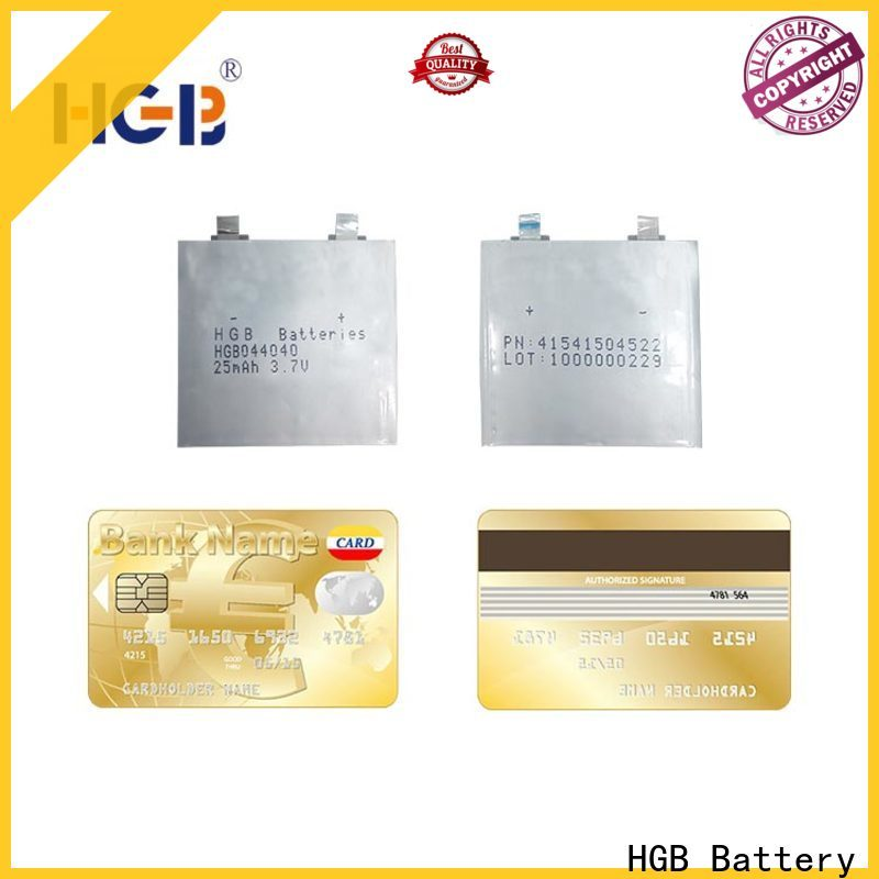HGB hin lithium battery series for tracking devices