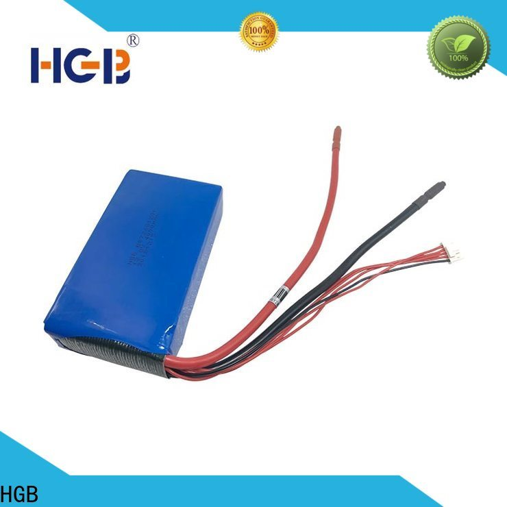 HGB non explosive 12v lithium ion battery charger circuit wholesale for EV car
