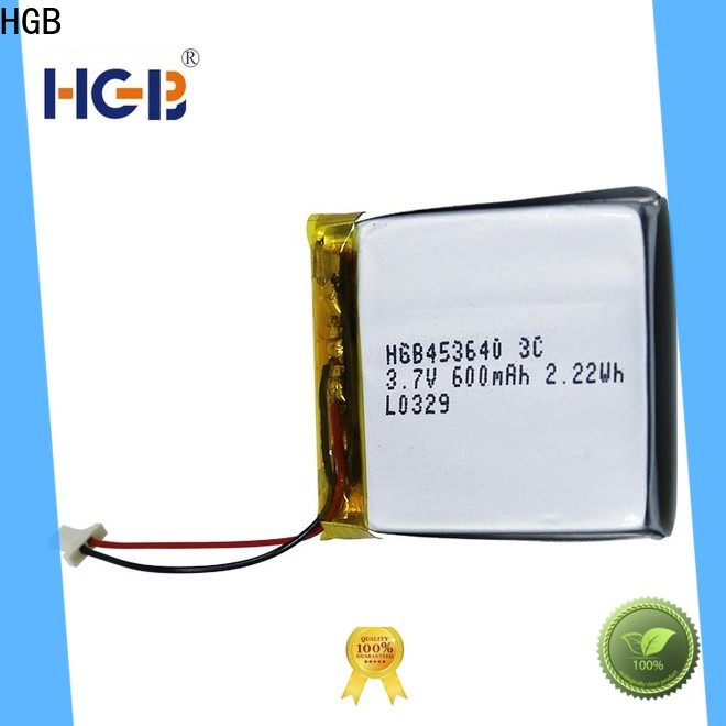 HGB flat li ion battery manufacturer for computers