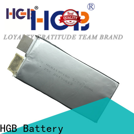 HGB durable low temperature lithium ion battery factory price for frigid zone