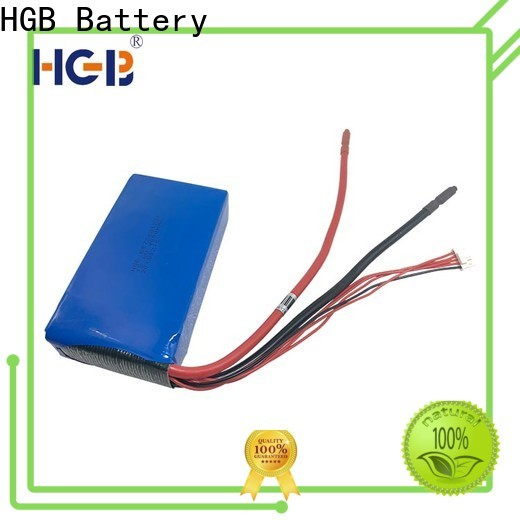 HGB fast charge lithium phosphate battery charger wholesale for digital products
