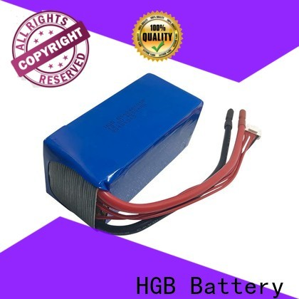fast charge lithium polymer car battery supplier for digital products