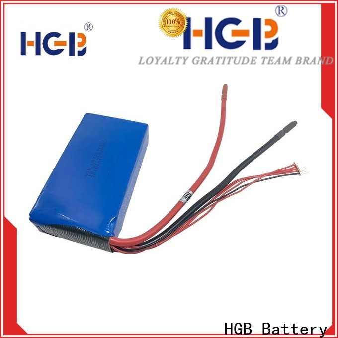 long cycle life lithium iron manganese phosphate battery customized for EV car