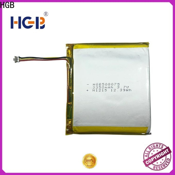 Best flat lithium ion battery pack manufacturer for digital products