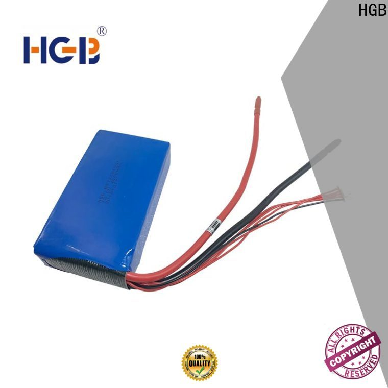 HGB nickel lithium battery company for EV car