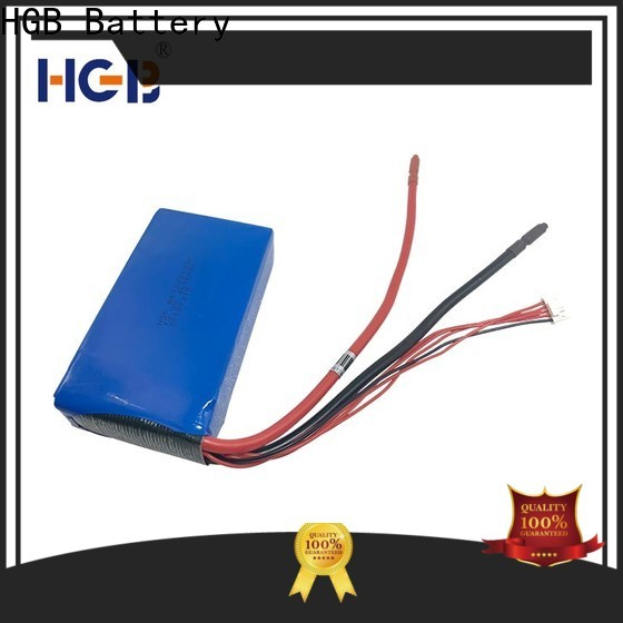 Top lithium iron phosphate deep cycle battery manufacturer for power tool