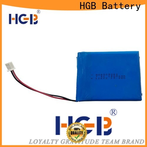 HGB flat cell lithium ion battery supplier for computers