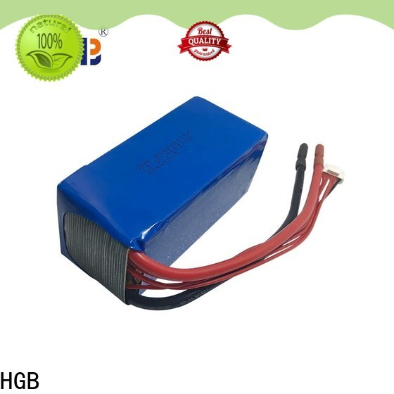 HGB Battery 12v 100ah lithium iron lifepo4 battery Supply for digital products