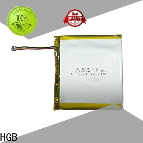 HGB Top flat lithium ion battery for business for computers