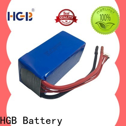 Wholesale lithium phosphate battery charger Supply for RC hobby