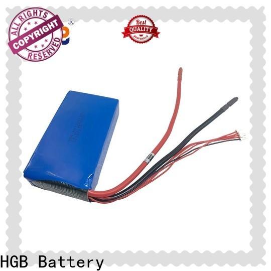 HGB lithium iron phosphate battery 12v 100ah customized for EV car