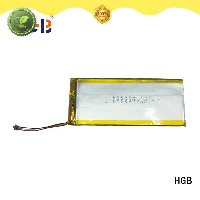 HGB popular flat lithium battery supplier for computers