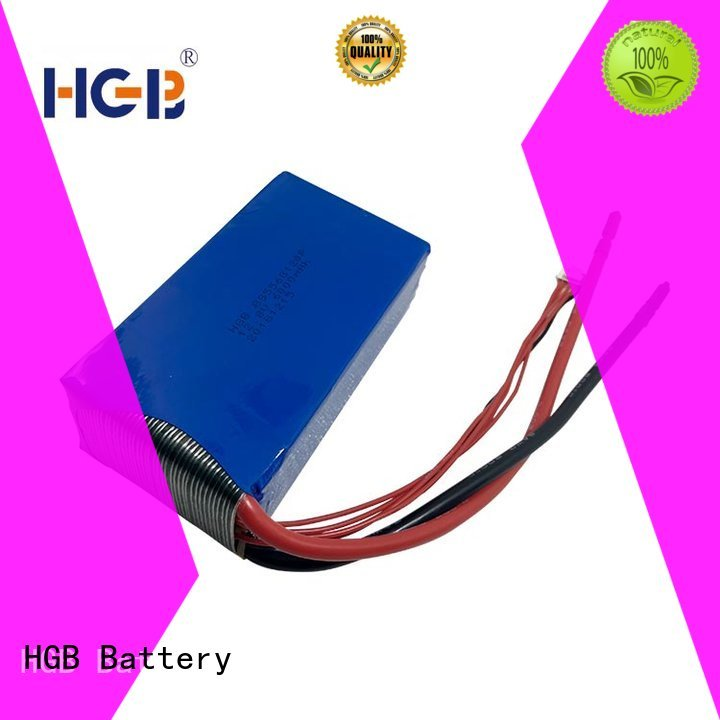 long cycle life lifep04 battery charger supplier for EV car