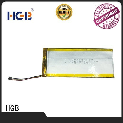 HGB flat lithium ion battery customized for computers