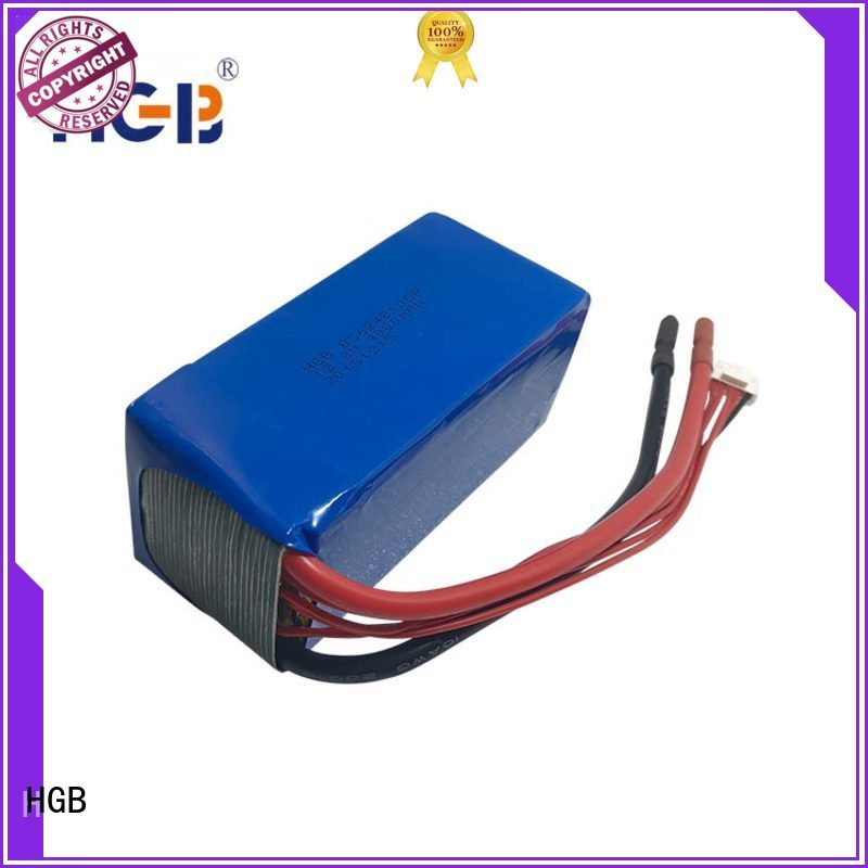 HGB lifep04 battery supplier for digital products