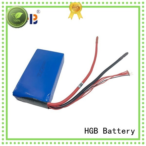 HGB fast charge lifep04 battery customized for digital products