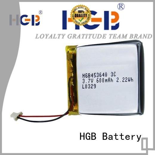 HGB flat lithium polymer battery supplier for mobile devices