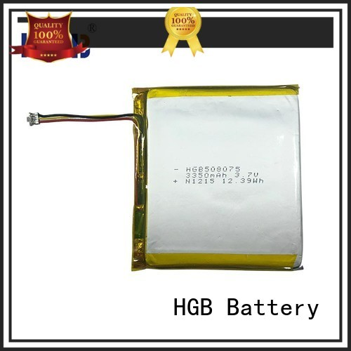 popular flat lithium polymer battery supplier for computers
