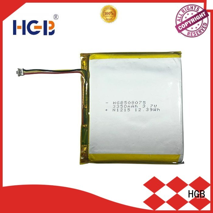 HGB flat lithium polymer battery supplier for digital products