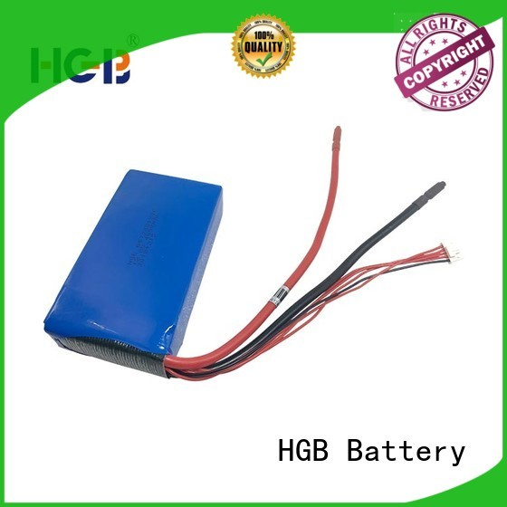 HGB light weight lifepo4 batterie customized for EV car