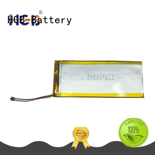 flat lithium polymer battery customized for computers HGB