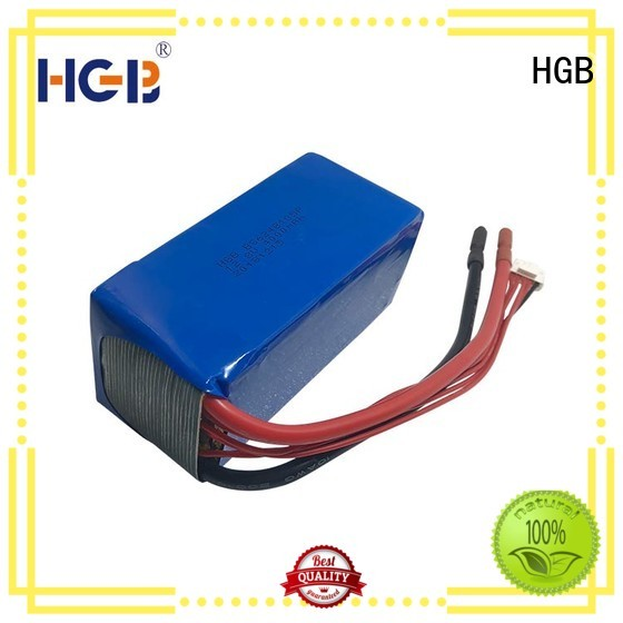 fast charge lifepo4 battery series for digital products