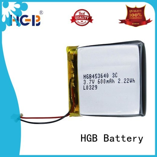 HGB quality flat lithium polymer battery supplier for computers
