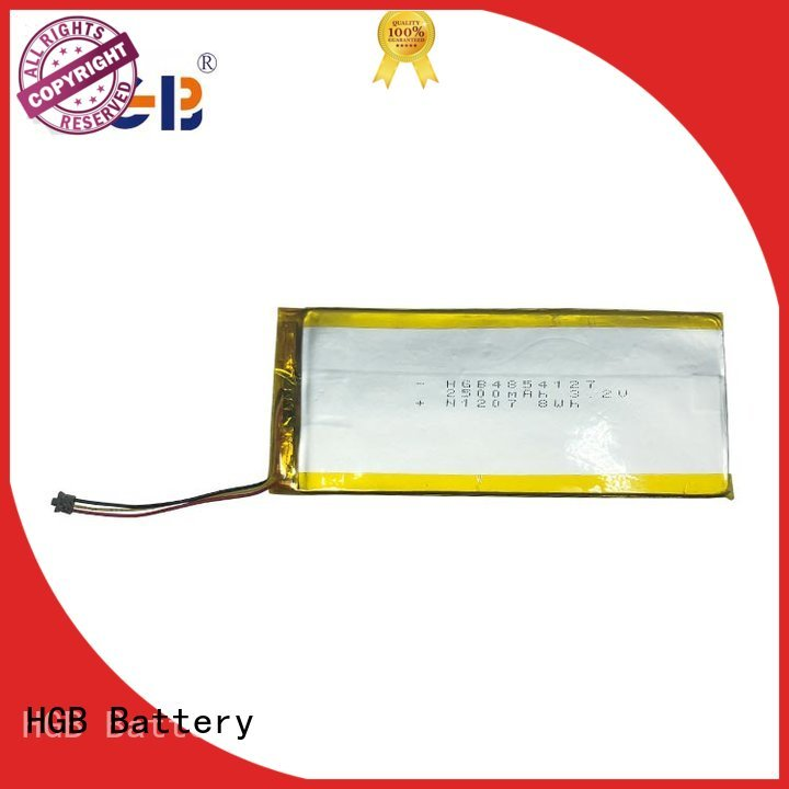HGB light weight flat lithium battery directly sale for computers
