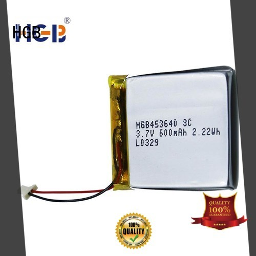 HGB reliable flat lithium polymer battery directly sale for computers
