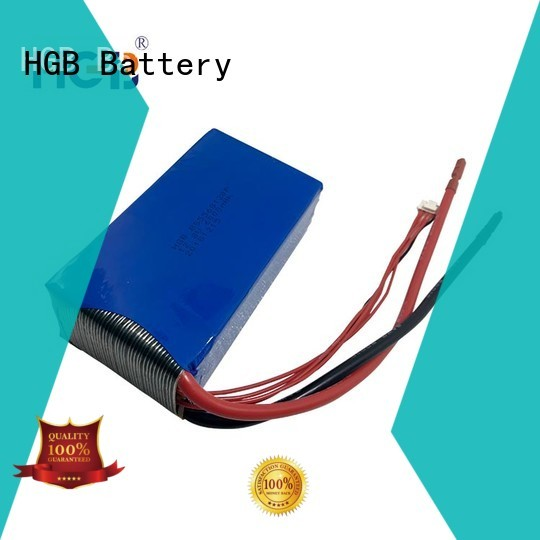 fast charge lifep04 battery directly sale for digital products