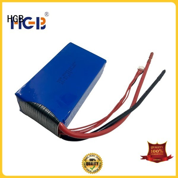 fast charge lifepo4 car battery factory price for RC hobby
