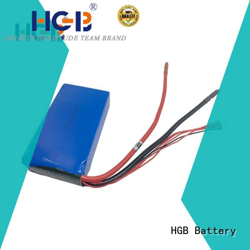 HGB non explosive lifepo4 charger for 3.2 volt batteries series for power tool