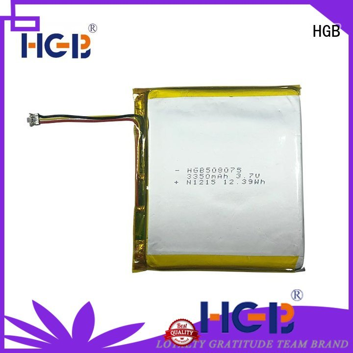 HGB flat lithium polymer battery customized for computers