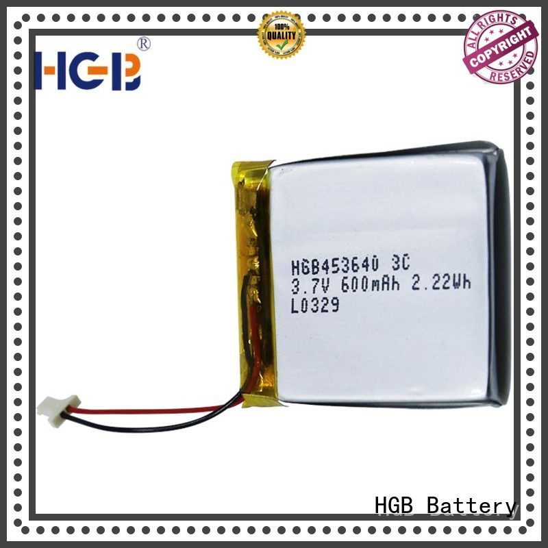 popularflat lithium batterycustomized for notebook