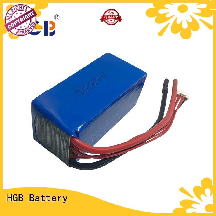 HGB lifep04 battery customized for power tool
