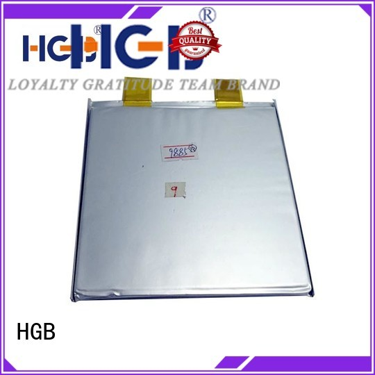 HGB lifep04 battery wholesale for digital products