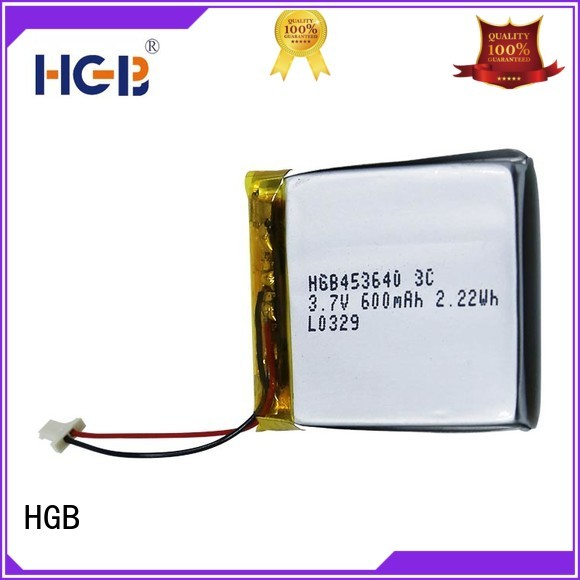 HGB flat lithium polymer battery manufacturer for computers